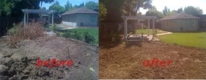 dirt removal before and after