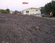 land clearing after